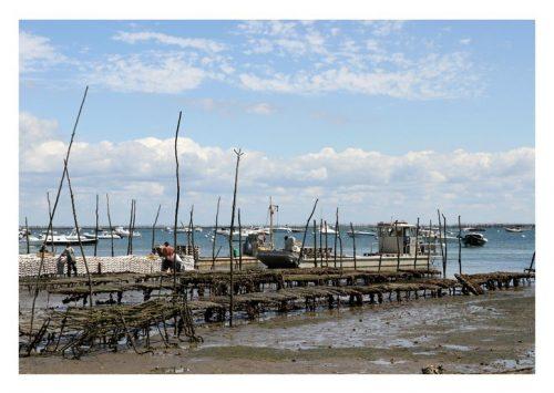 Carte postale Parc à huîtres Bassin d'arcachon