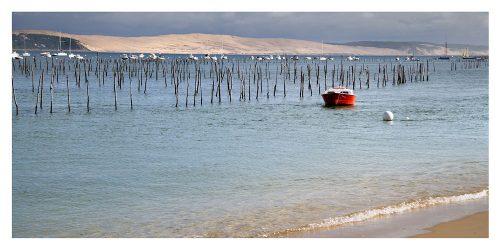 Carte postale panoramique vue du Bassin d´Arcachon et de la Dune de Pyla par Cap Ferret