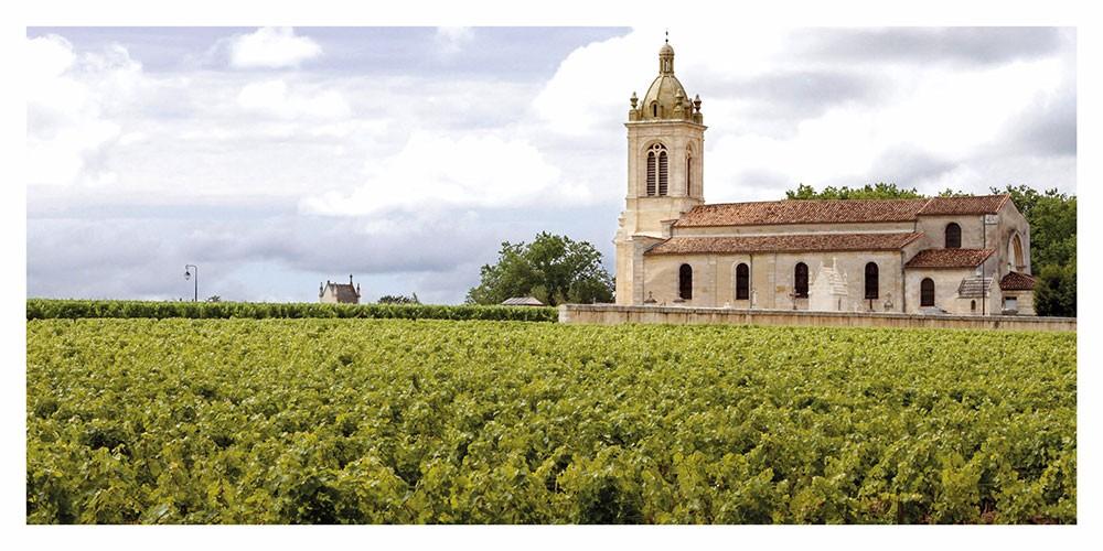 Carte postale panoramique des vignaobles et église dans le Bordelais