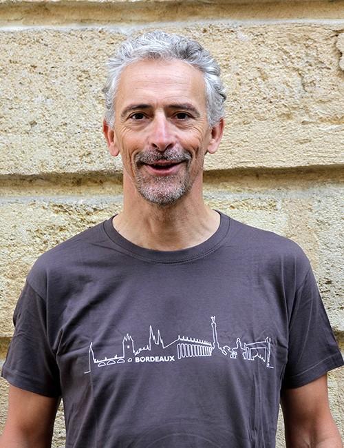 t-shirt gris avec BORDEAUX Skyline pour homme