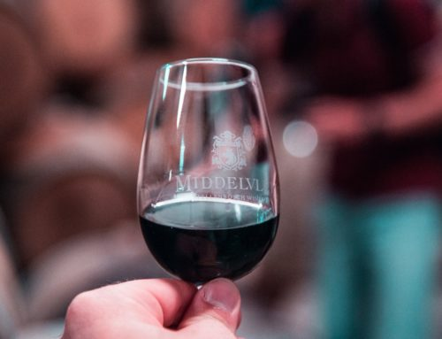 Comment organiser une dégustation de vin à domicile ?